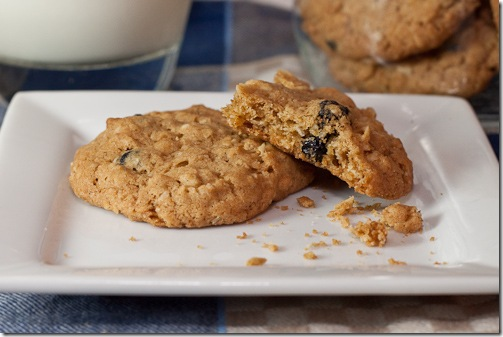 oatmeal blueberry cookies-5